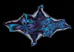 050a: Behutsamkeit (Jo&Ma) Tags: fractalsgrp fractal fractalart computergraphics nature organic selbstähnlichkeit expandingsymmetry selfsimilar illustration iteration mathematics imaginärezahlen computerbasedmodelling geometric patterns
