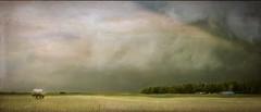 Storm Approaching (jarr1520) Tags: sky clouds storm prairie grasses buildings flowers textured composite watertank
