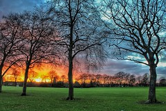 Trees and Colours (LeanneHall3 :-)) Tags: groupenuagesetciel cloudsstormssunsetssunrises landscape skyscape sunset