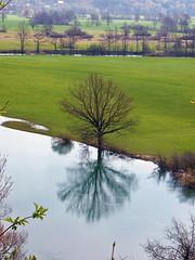 Planinsko polje (Vid Pogacnik) Tags: slovenija slovenia notranjska planinskopolje river flood field tree