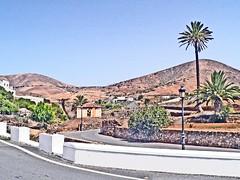 Espagne, l'île de Fuerteventura, la ville de Betancuria (Roger-11-Narbonne) Tags: fuerteventura île volcan ville aride océan bétancuria arbre pajara