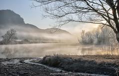 Adda river landscape (fabrizio daminelli ) Tags: alba sunrise italy fabriziodaminelli canon lombardy lombardia wildlife natura nature landscape paesaggio sole sun fog nebbia river fiume adda