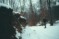 KRIS7627 (Chris.Heart) Tags: túra tél természet winter hiking forest pilis
