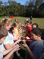 Group Challenges - Helium Stick