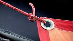 Red (patrick_milan) Tags: red rouge aberwrach sea marine naval mer sail ship boat bateau