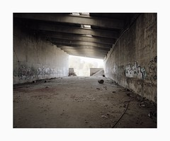 Untitled, 2018 (Darius Urbanek) Tags: 65mm 6x7 kodak germany mamiya7 portra400 film color analog mediumformat decay abandoned industry hall