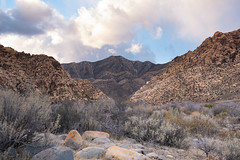 P1170114 (db917) Tags: mountains nevada vegas redrocks travel desert