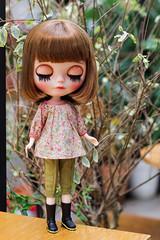 Vintage Ruffle Collar Top (Ylang Garden) Tags: blythe top pant mori floral momoko