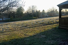 Boxing Day Morning (edenpictures) Tags: maryland potomac winter backyard dawn morning gazebo lawn