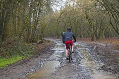 Rainy day (JSB PHOTOGRAPHS) Tags: jsb7545 dorrisranch bike riding rainyday water mud nikon d7000 1755mm 28