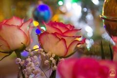 12. Праздник Крещения Господня в Богородичном 19.01.2019_1
