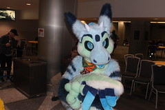 IMG_8968 (South Kitsune) Tags: fursuit furries furcon costumes cosplays caliur furry fandom