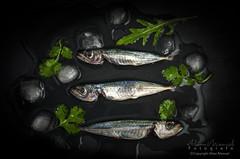 Capture0022 (alianmanuel fotografia) Tags: fish sardina food1 foodphotography photofood foddphoto fotografiaculinaria foodphotograph bodegones