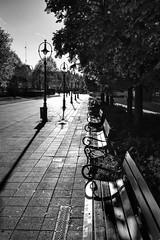 Blinded by the light (max tuguese) Tags: urban monochrome black white bianco nero blanc noir noiretblanc blanco negro schwarz weis flickr maxtuguese street photographer light dark outdoor art arte cityscape