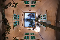 A tree um - Atrium (uwe1904) Tags: herbst landschaft mallorca pentaxk1 spanien urlaub uwerudowitz balearen symmetrie fisheye es