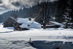 Massif du Mont-Blanc, 110 (Patrick.Raymond (5M views)) Tags: mont montagne alpes hautesavoie megève combloux neige hiver gel froid nikon