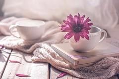 """""""Coffee time"""" (mariajoseuriospastor) Tags: taza coffee margaritas flores stilllife"""