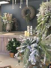 """Holiday 2018 • <a style=""""font-size:0.8em;"""" href=""""http://www.flickr.com/photos/39372067@N08/32108971418/"""" target=""""_blank"""">View on Flickr</a>"""