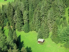 Hut From Above (saxonfenken) Tags: 20austria hut trees below fromabove green smallshed austria 20 challengeyouwinner gamewinner