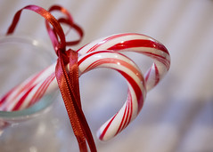 352/365 Candy Canes (Helen Orozco) Tags: 352365 2018365 candycanes stripes ribbon bottle realfood raw christmas tied two milkbottle