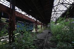 4W0B9225 Abandoned Railway Depot (Brigitte W) Tags: lostplace urban abandoned abandonedphotography forgotten abandonedplaces lost decay lostplaces urbanexploring poland railway depot