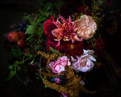 Old Master (photoart33) Tags: flower stilllife oldmaster rose dahlia dark moody