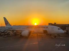 Japan Airlines /Haneda , Tokyo (Jennifer 真泥佛) Tags: haneda tokyo japanairlines 日航 東京羽田 羽田空港 東京都 日本 羽田國際空港 iphonex