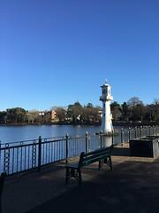 Roath Park (knightimogen) Tags: cardiff wales winter bluesky river park bench discovercymru trees shadow outside water