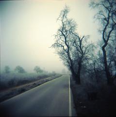 A walk with Holga (lsmart) Tags: film analog holga120n 120 kodak portra160nc mediumformat 6x6film toycamera
