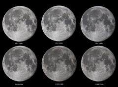 Contenders (nicklucas2) Tags: astrophotography moon moon2019 moonjan2019 ringwood england unitedkingdom gb