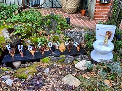 furlough is over! (ekelly80) Tags: dc washingtondc january2019 winter furlough shutdown trumpshutdown qstreetbarbies barbies toilet