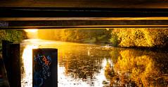 15.jpg (vossemer) Tags: hamburgfreieundhansestadt herbst orte stimmungen wasser städte flüsse landschaften alster spiegelungen natur jahreszeiten hamburg deutschland de