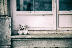 363/365: Don't leave me this way...The Communards (judi may) Tags: 365the2018edition 3652018 day363365 29dec18 teddy door steps lonely teddybear wrestpark bedfordshire canon5d windows peelingpaint textures dirtywindows shabby