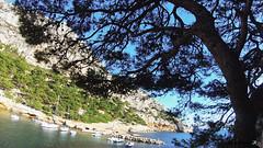Reconnaissance falaise de la voile novembre 2018_00028 (akunamatata) Tags: calanques reconnaissance national park novembre 2018 provence france trailrunning