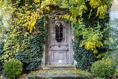 DSC_1740D (funkydroopy) Tags: porte automne