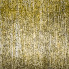 Birch (kate stringer) Tags: yellow