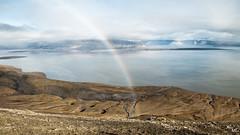 Nice window (Mehdi LABIDI) Tags: voyage travel nikon d90 nature naturallight glace glacier svea lumierenaturelle lumiere water eau froid couleur color spitzberg svalbard northpole norge norway norvege sea polar arctic