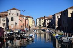 Chioggia, Italy, December 2018 051 (tango-) Tags: chioggia veneto italia italien italie italy
