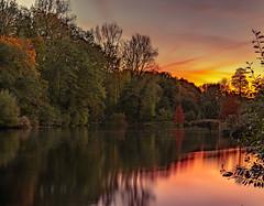 Sunset - Parc Woluwe - Belgium