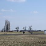 Tempelhofer-Feld_e-m10_1013304339 thumbnail