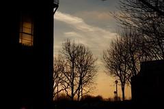 Every ending has a new beginning (S Clark) Tags: newyear newstart everyendinghadanewstart wintersun sunset southeastlondon london londonist londonlife thamesbarrier thamespathway thamesriverpath fujifilm fujifilmxt100 silhouette winter january sei8stories se18 woolwich woolwichriverside wonderfulwoolwich bowaterroad