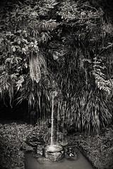 愛宕念仏寺 (小川 Ogawasan) Tags: japan japon kyoto nenbutsuji otagi rakan saga