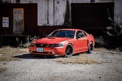 1FC57967-820F-4807-BAC0-628D12E44187 (Jacob Knapp) Tags: photoshoot automotive manual auto car picture shoot shiot photo mustang