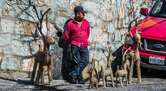 2018 - Mexico - Oaxaca - Reindeer sales (Ted's photos - Returns late Feb) Tags: 2018 cropped mexico nikon nikond750 nikonfx oaxaca tedmcgrath tedsphotos tedsphotosmexico vignetting streetscene street people denim denimjeans male red redrule reindeer shadow shadows vehicle ford ballcap