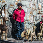 2018 - Mexico - Oaxaca - Reindeer sales thumbnail