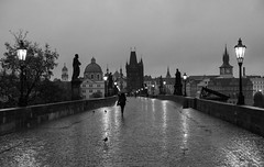 Rainy Morning on Charles Bridge (romanboed) Tags: leica m 240 summilux 50 czech europe cesko czechia prague praha prag praag praga city fall autumn travel tourism 布拉格 прага プラハ براغ 프라하 karluv most charles bridge bw monochrome black white