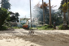Dry Boat (O Lobão) Tags: color boat dog beach sand dry land fishing trees jungle people landscape nature sun 750d sooc portbarton palawan philippines mist shadow green