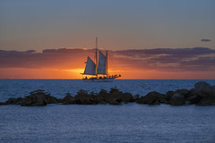 Key West Sunset (lgflickr1) Tags: keywest florida water ocean oceanfront rocks blue outdoor outside outdoors orange sunset ship sails clouds pretty eastcoast atlanticocean silhouette birds seagulls dusk sundown colorful peaceful d750 nikkor nikon travel vacation exterior landscape