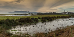 A winters day (cazalegg) Tags: dumfriesshire scotland wild fowl wetlands mountain galloway sky storm winter nikon nature reserve