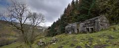 Abandoned Farmhouse With Barn (cassidymike21) Tags: landscape abandoned farmhouse